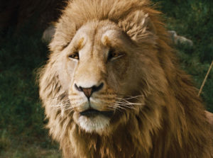 """When they tried to look at Aslan's face they just caught a glimpse of the golden mane and the great, royal, solemn, overwhelming eyes; and then they found they couldn't look at him and went all trembly."""