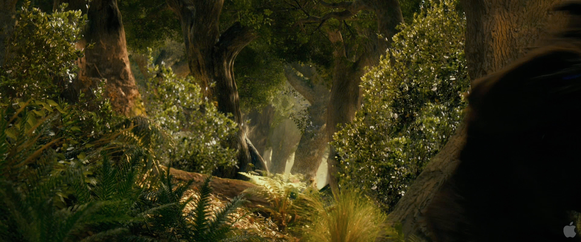 Speculative Faith The Hobbit Story Group 8 Flies And