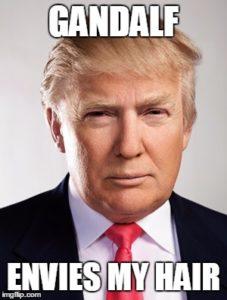 donald-trump-hair-meme