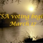 Voting For The 2014 CSA Finalists
