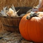 Thanksgiving Day And Speculative Fiction
